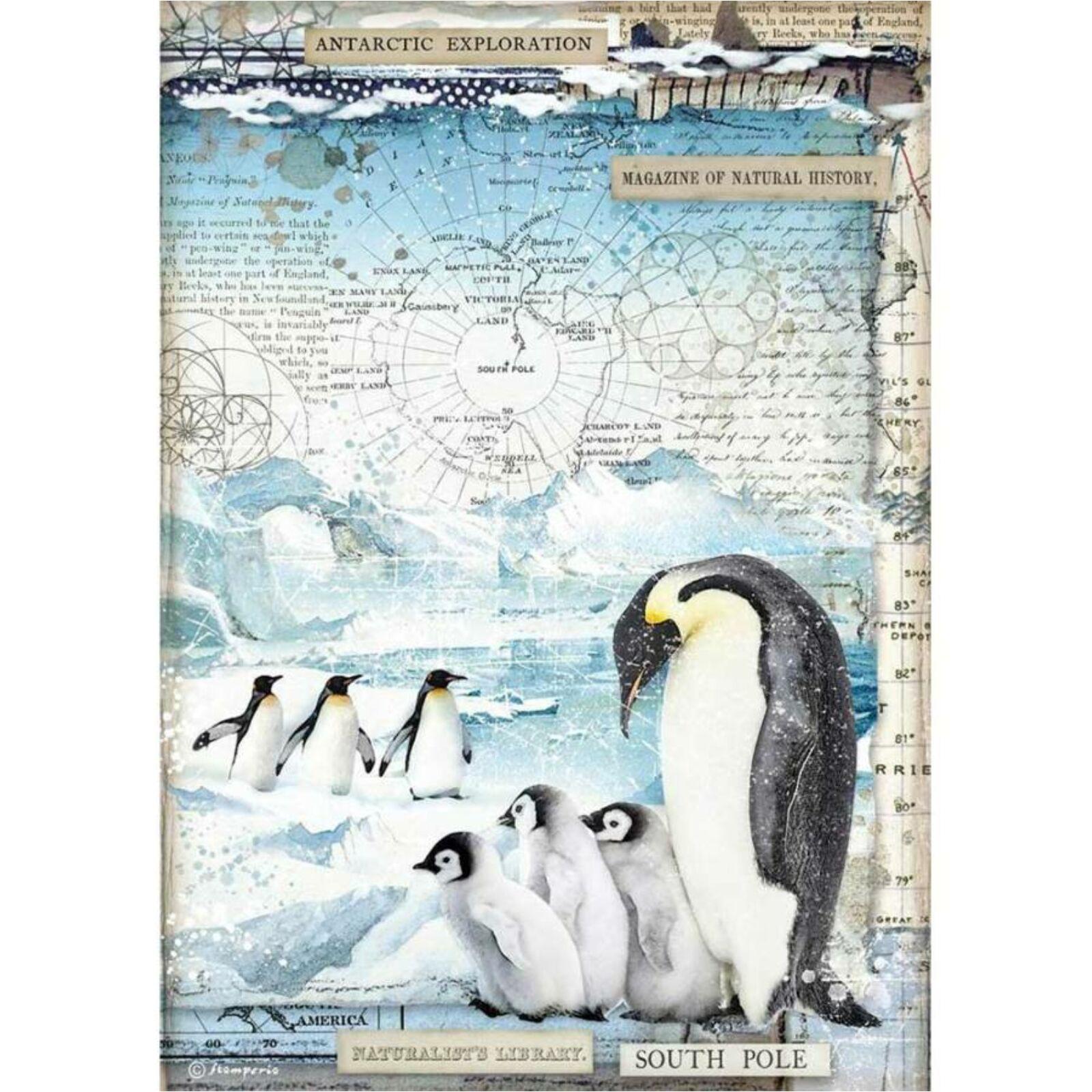 Pingvinek A4  [DFSA4479]